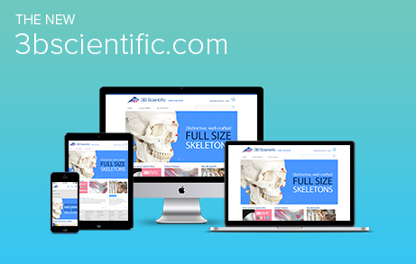 3bscientific.com Website Relaunch 2014